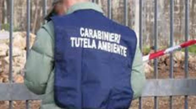 noe carabinieri - Copia