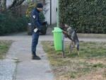 polizia locale cinofila parchi ok