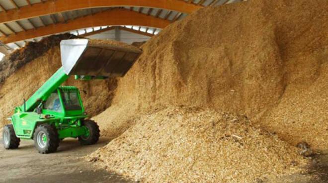 centrali a biomassa1