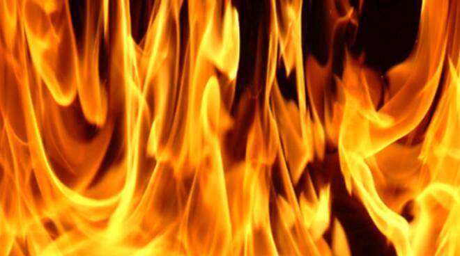 rogo-fiamme