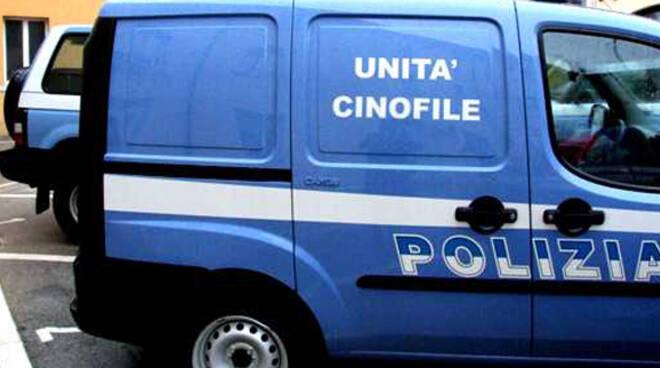 polizia unità cinofila