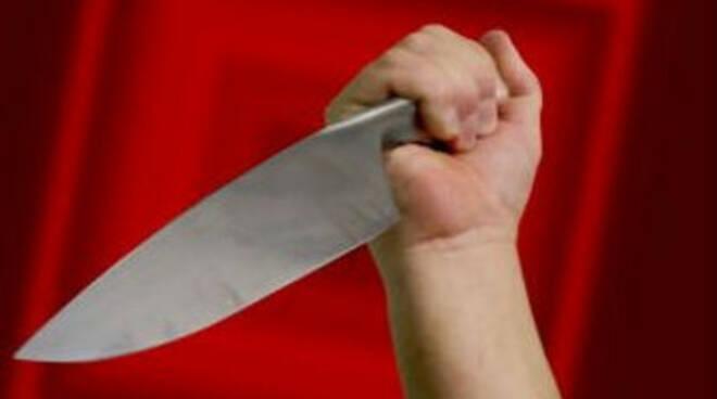 coltello 1