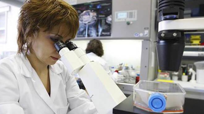 laboratorio staminali
