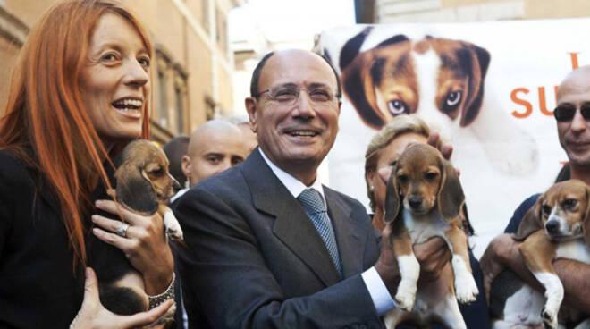 Senato, consegna in adozione degli ultimi 3 cani di Green Hill