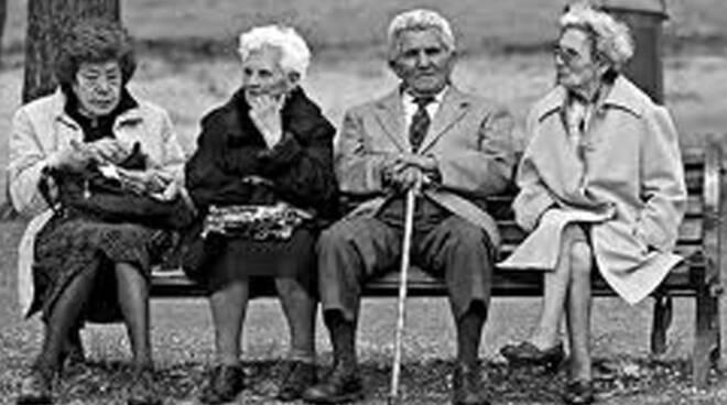 anziani panchina