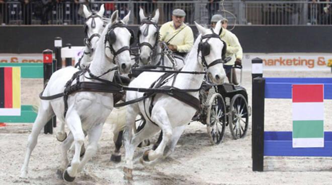 travagliato cavalli