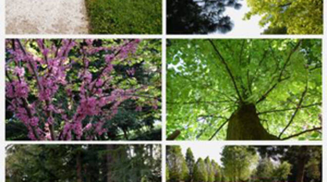 parchi e piante