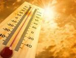 caldo temperature