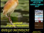 DiegoMondini_mostra_agosto2013m
