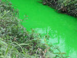 vaso fiume verde 3