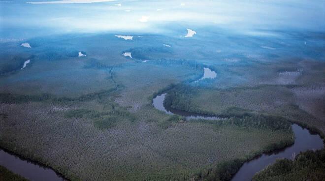 delta del niger