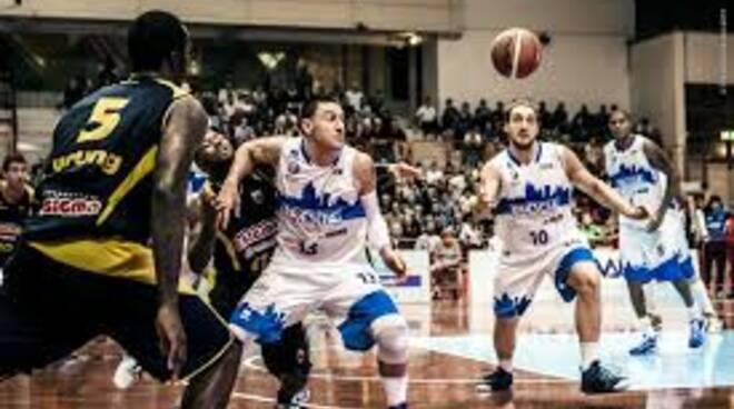 leonessa basket