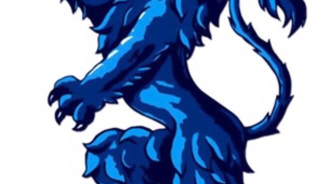 logo_torneo_calcio_giugno14_mail[4]