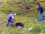 Cane ucciso a bastonate, turista documenta con foto