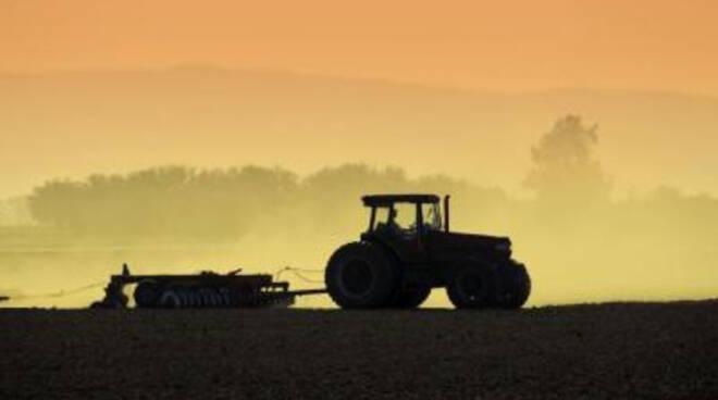 agricoltura-11