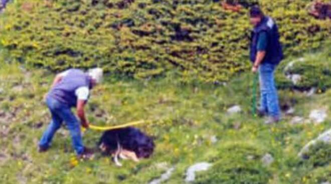 cane-ucciso-assolti-appello
