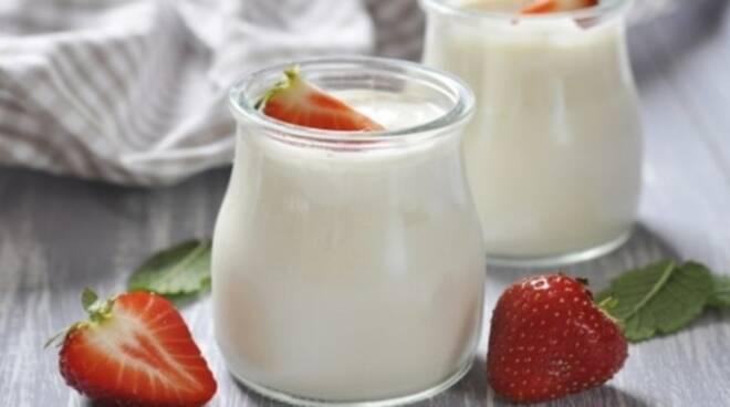 yogurt-di-soia