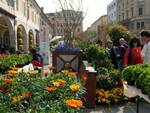 Brixia-Florum-Brescia