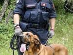 Cani molecolari carabinieri (1)