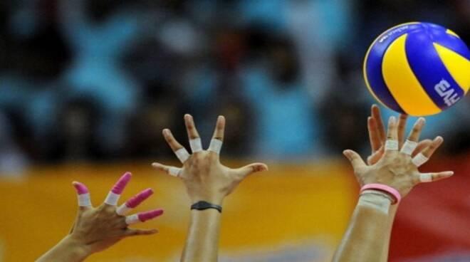 volley-femminile.jpeg_sportlive.it_