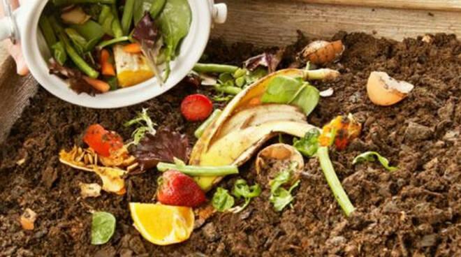 rifiuti-organici
