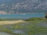 lago-iseo-alghe-eradicazione