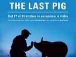 the-last-pig