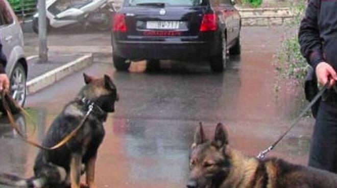 carabinieri-scuole-controlli-droga