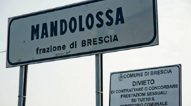 mandolossa