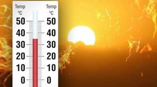 caldo (1)