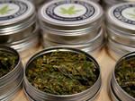 Cannabis-legale-dibattito-brescia