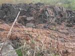 Bedizzole-smaltimento-fanghi