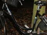 borgosatollo-muore-ciclista-investita-anno