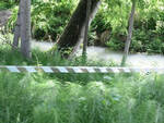 Roggia-inquinata-quinzano