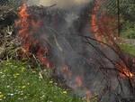 brucia-bosco-sabbio-chiese-denuncia