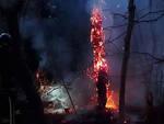 Bione-incendio-cavi-tensione