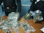 Droga-olanda-italia-brescia-arresti