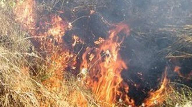 brucia-sterpaglie-gussago