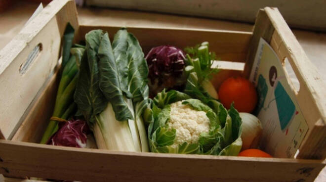 calcinato-finti-venditori-frutta-verdura-ladri