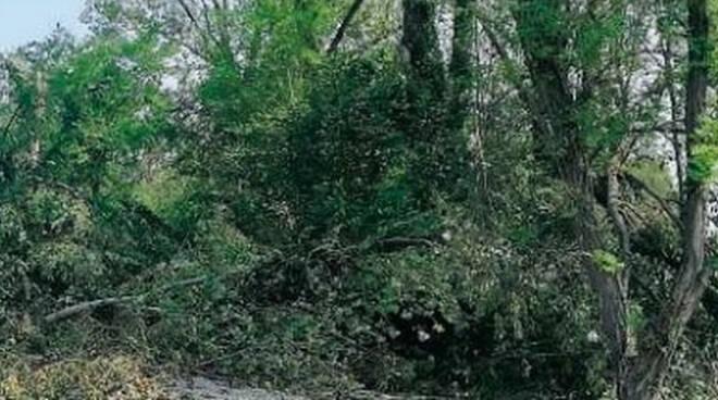 maltempo-parco-oglio-distrutto