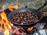 bagnolo mella intossicati da monossido castagne