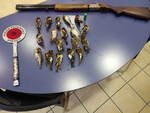 ponte caffaro bracconiere bagolino cattura uccelli protetti