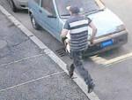 Furto casa via Milano due arrestati Squadra mobile