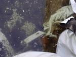 Iseo morìa pesci Torbiere sversamento sostanze