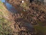 Montichiari smaltisce liquami canale denunciato