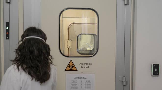 coronavirus, laboratori sempre attivi