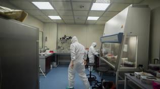laboratorio covid