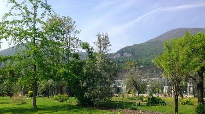 orto botanico toscolano maderno