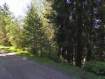 Edolo auto si ribalta tra i boschi in via Monte Colmo una vittima