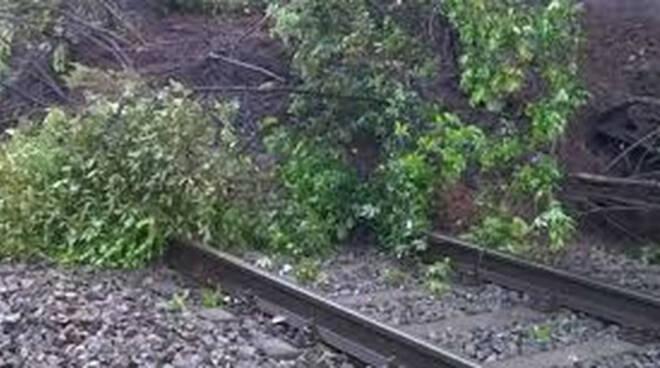Maltempo mattina di circolazione in tilt sui treni della Lombardia